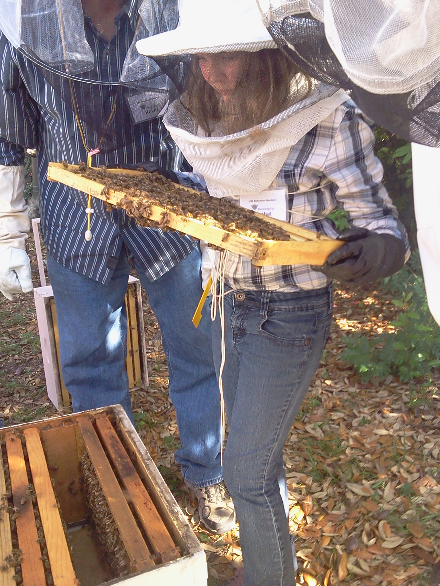 Beekeeping Class at USF